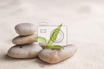 Zen kamienie i bambusa na piasku