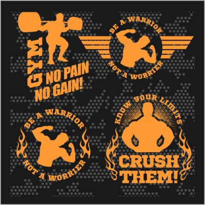 Plakat Zestaw nowoczesnych Kulturystyka i siłownia logo, emblematy