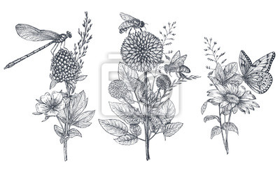 Plakat Zestaw trzech wektor bukiety kwiatowe z czarno-białych ręcznie rysowane zioła, kwiaty i owady