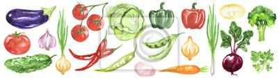 Plakat zestaw warzyw akwarela. Świeże i zdrowe warzywa na białym tle. Doskonałym źródłem witaminy. Bakłażan, pomidor, chili i wiele innych.