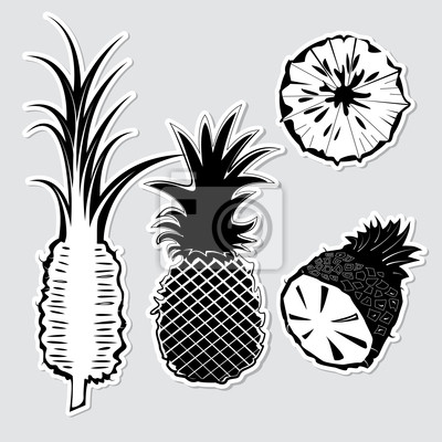 Zestaw wektora dekoracyjne ananasów
