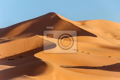 Plakat złote wydmy w Saharze