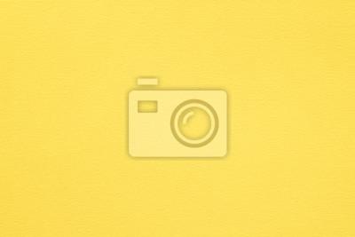 Plakat żółty papier tekstura tło. kolorowe włókna kartonowe i ziarna. koncepcja pustej przestrzeni.