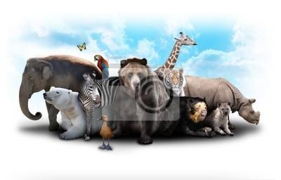 Plakat Zoo Animal Friends