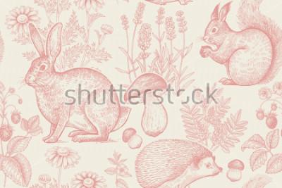 Plakat Zwierzęta leśne i rośliny wzór. Zając, jeż, wiewiórka, jagody truskawkowe, kwiaty lawendy, rumianek i grzyby. Rysunek odręczny. Biały i czerwony. Grawerowanie rocznika. Ilustracji wektorowych