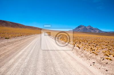Plakat Żwir drogowego w Atacama pustyni, Chile