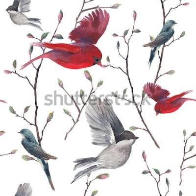Tapeta Akwarela bezszwowe wzór z jaskółki, czerwone ptaki kardynał i gałązki drzew. Wektor ręcznie rysowane tło wiosna. Powtarzająca się tapeta w stylu vintage