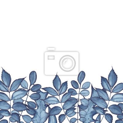 Tapeta Akwarela granica z liśćmi, ręka malująca z indygową akwarelą na białym tle.