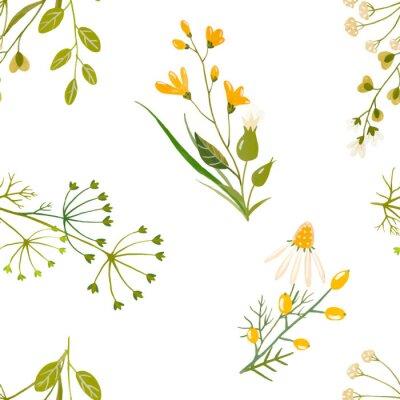 Tapeta Akwarela kwiatowy wektor wzór