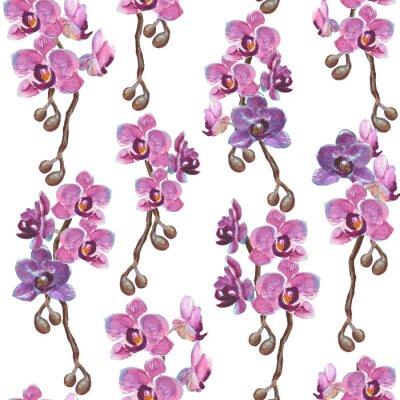 Tapeta Akwarela orchidea oddziałów bez szwu deseń na białym tle