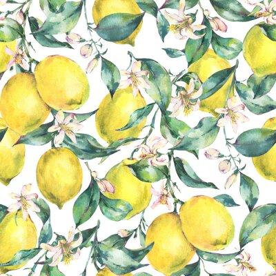 Tapeta Akwarela rocznika wzór, gałąź owoców cytryny