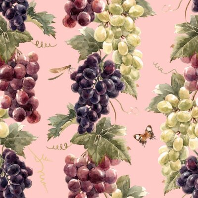 Tapeta Akwarela wzór winogron
