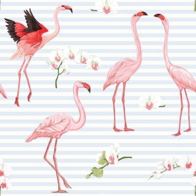 Tapeta Bezszwowy wzór, tło z tropikalnymi ptakami