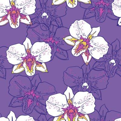 Tapeta Bezszwowych kwiatów wzór bia? Ych storczyków