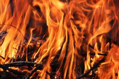 Tapeta Bright background of burning orange flames, close-up