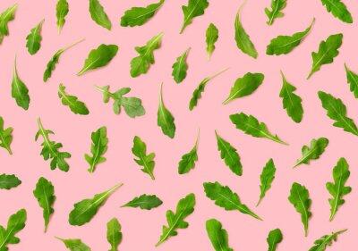 Colorful pattern of fresh rucola or arugula leaves