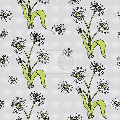 Daisy kwiaty Szary