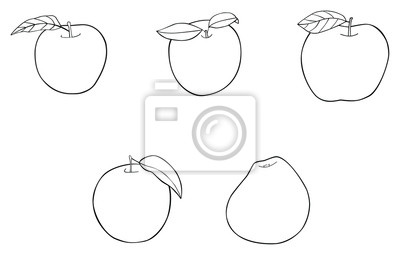 Delightful garden - Set of five apples with leaves