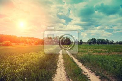 Dirt road w polu z niebieskim pochmurne niebo o zachodzie słońca. Piękna wieczorna przyroda, krajobraz wiejski, wiosna