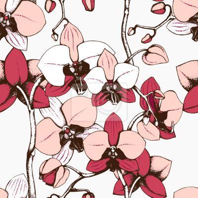 Tapeta Egzotyczna orchidea