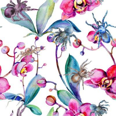 Tapeta Egzotyczny tarantula dziki insekta wzór w akwarela stylu. Pełna nazwa owada: tarantula, pająk. Aquarelle dziki insekt dla tła, tekstury, opakowania wzoru lub tatuażu.