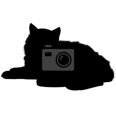 Tapeta Grafika Wektorowa Kot Perski Czarny Sztuka Tło Redropl