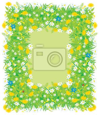Granica pola kwiatów i trawy