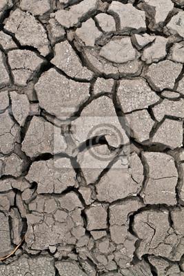 Tapeta ground suchych gruntów