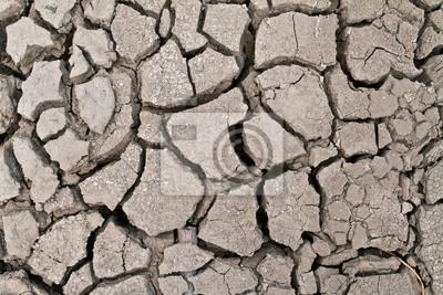 ground suchych powierzchni ziemi