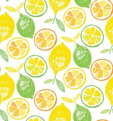 Tapeta Hand drawn doodle citrus pattern background