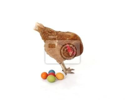 Huhn mit Ostereiern