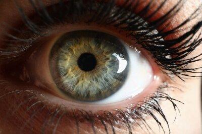 Tapeta Human green eye supermacro closeup background