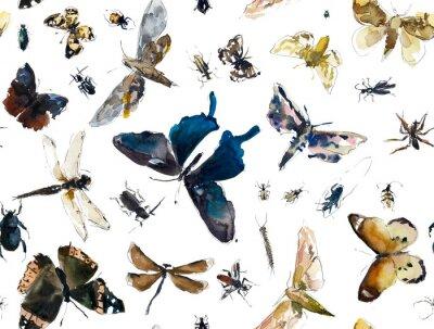 Tapeta Jednolite wzór z owadów. Motyle, robaki, ważki. Szkice. Ręcznie rysowane akwarela ilustracja.