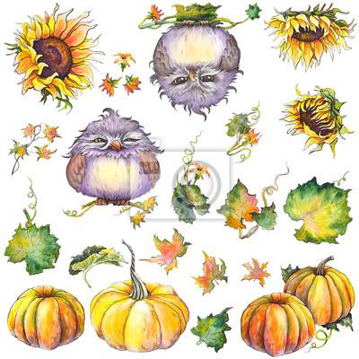 Tapeta Jesień zestaw z dyni, słoneczniki, liście i zabawne postacie sowy. Pojedyncze elementy do projektowania. Akwarela ilustracja.
