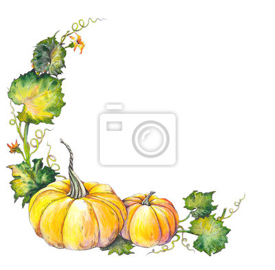 Tapeta Jesienna granica z dyni, liści i kwiatów. Akwarela ilustracja.