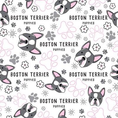 Tapeta Kolekcja pies rasy: Seamless Pattern: Vector Illustration