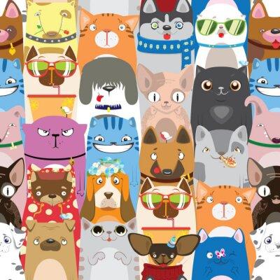 Tapeta kolorowy wzór z zabawnymi kotów i psów