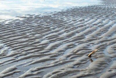 Kotwice w piaszczystej plaży.