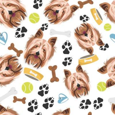 Tapeta Lächelnder Hund Yorkshire Terrier