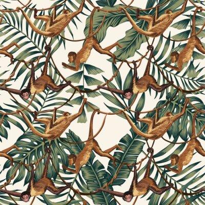 Tapeta Małpy na pnączach na tle liści tropikalnych