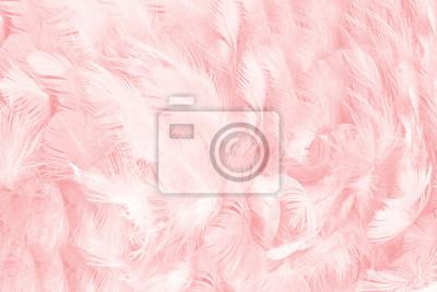 Tapeta miękki różowy kolor vintage trendy kurczak pióro tekstura tło