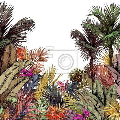 Tapeta Multicolored tropical foliage and exotic flowers. Hand drawn vector illustration isolated on white background.