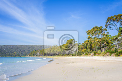 Niesamowity widok na wspaniałą rajską wyspę piaszczystą plażę z turkusową niebieską wodą i zielonym lasem dżungli na ciepłe słoneczne jasne niebo relaksujący dzień, River Adventure Bay, Bruny Island,