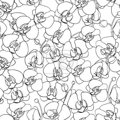 Tapeta Ocean Orchidee