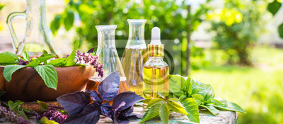 Tapeta Oil for skin care, massage from natural ingredients, herbs, mint in glass jars and test tubes on a green background in the garden on the nature, natural cosmetics