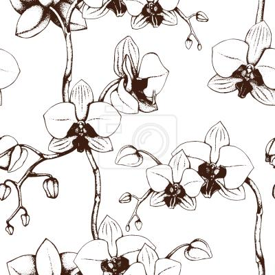 Tapeta Orchid Bloom