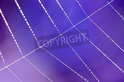 Pajęczyna z krople rosy idolated na rozmycie niebieskim tle purpurowy.