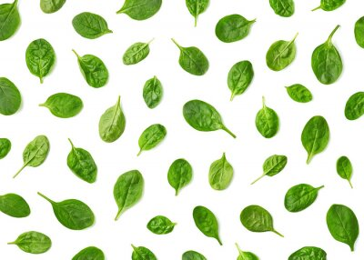 Pattern of fresh spinach leaves