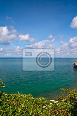 Piękne wybrzeże z drzew i błękitne niebo w Tajlandii