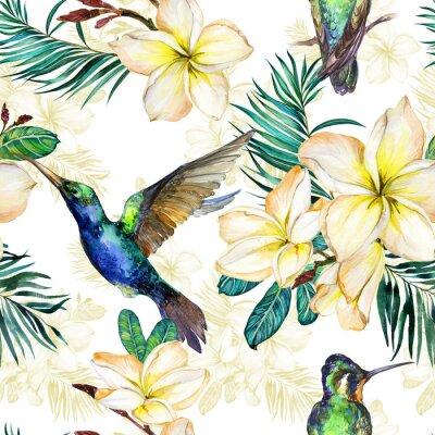 Tapeta Piękny colibri, żółci plumeria kwiaty i palma liście na białym tle ,. Egzotyczny tropikalny wzór. Malarstwo Watecolor. Ręcznie malowane ilustracji.